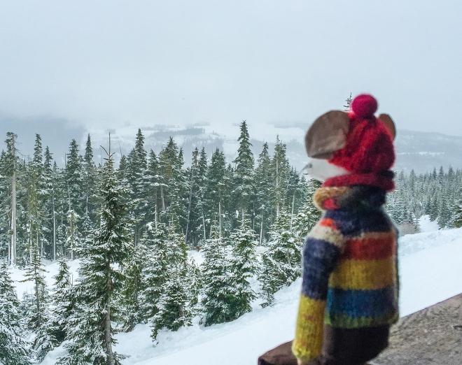 wiston on skiis-9